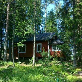 YLE Tampere: Seksiä kesämökillä - tai sitten ei