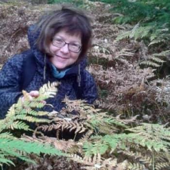 Minna Pyykön maailma: Mistä tulevat kasvien nimet?