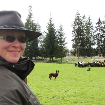 Lieto asemanseutu: Koira karjapaimenena, nuori maatalousyrittäjäperhe, kyläkauppa palasi