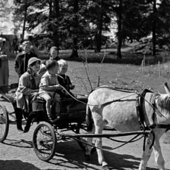 125 vuotta Korkeasaaren historiaa