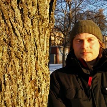 Luontoretki.: Mitä puu paljastaa itsestään talvella?