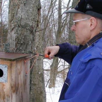 Luonto-Suomi.: Linnunpönttöilta