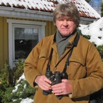 Minna Pyykön maailma: Lintumies Lasse J. Laine