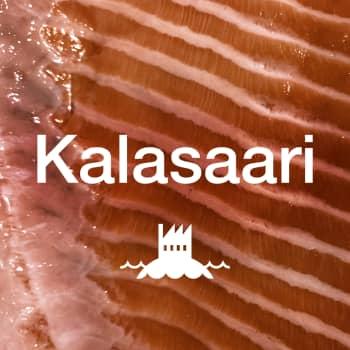 Kalasaari