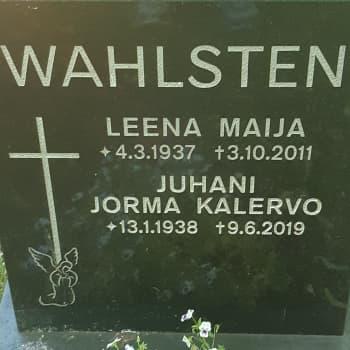 Juhani Wahlsten - jääkiekon edelläkävijä