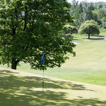 Paltamo Golfilta 200 000 euron ostotarjous golfkentästä ja tonteista
