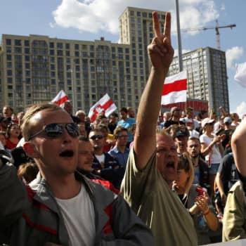 Selkä seinää vasten - vaihtuuko Valko-Venäjällä valta?