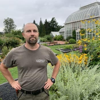 """3000 olika blommor, buskar och träd - mitt i Helsingfors: """"Den botaniska trädgården har stått här sedan 1830-talet"""""""