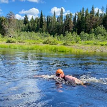Uisitko 25 kilometriä virtavedessä? Oulankajoella se todistetusti onnistuu