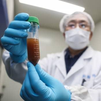 Finland beställer troligen mer än ett potentiellt coronavaccin