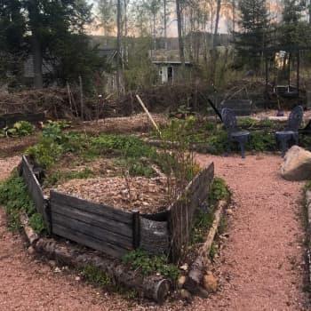 Hiidenveden puutarhassa