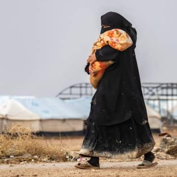 Vad gör vi med al-Hol-familjerna nu när de är här?