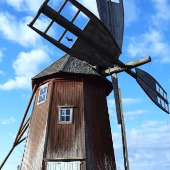 Röppään tuulimylly Otavassa korjataan kesän aikana