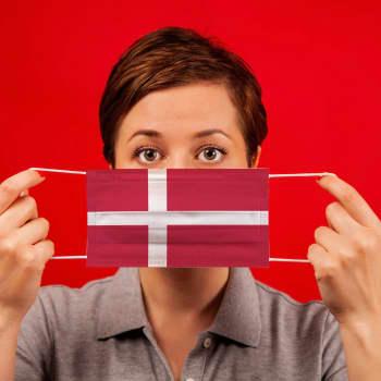 Danmark öppnas efter coronaisoleringen i fas 2 - turistföretagarna vill öppna gränserna mot Tyskland och Norge