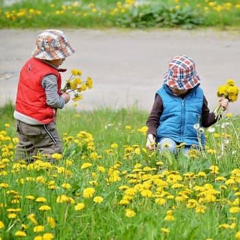 Lasten Luontoilta