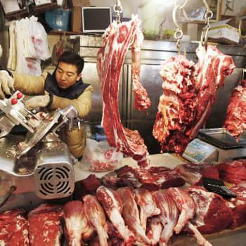 Kiinassa eläinten kaltoinkohtelu ei rajoitu vain ruokatoreihin