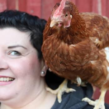 Kananmunien kysyntä kasvaa - kuluttajat haluavat yhä enemmän tietoa munien alkuperästä
