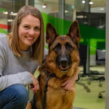 Topi the dog valittiin vuoden tamperelaiseksi - ohi pääministerin