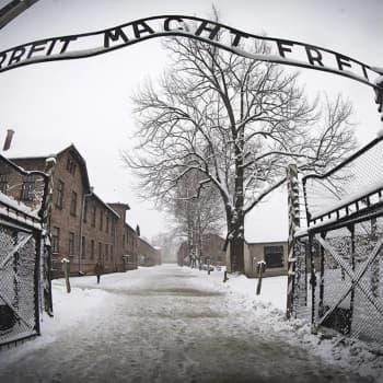 Miksi juutalaisvastaisuus lisääntyy ja millaista antisemitismi on nyt?