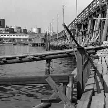 Kulosaari – Idyllinen suurlähetystöalue, Suomen vanhin rivitalo ja huonosti tunnettu pikkusaari