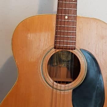 Landola - den inhemska gitarren som skulle erövra världen
