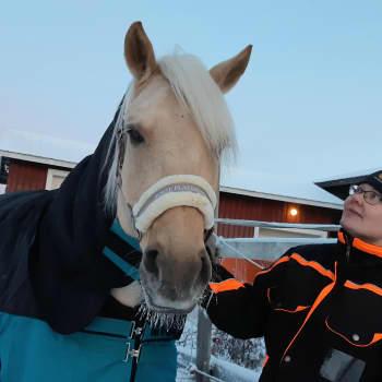 Lomittaja Kati Pölönen on unelma-ammatissaan