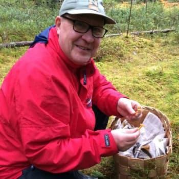 Teatterinjohtaja Reino Bragge on innokas sienimies, joka lahjoo työkavereita suppilovahveroilla