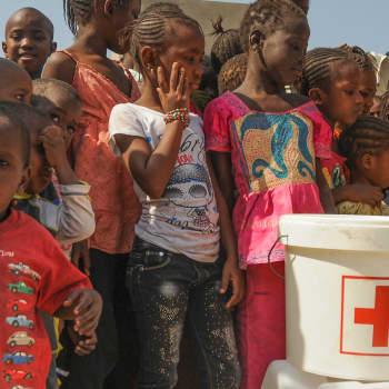 Minkälaiset pakolaisleirit olisivat tehokkain osa Afrikan pakolaistilanteen ratkaisua, Matti Kääriäinen?