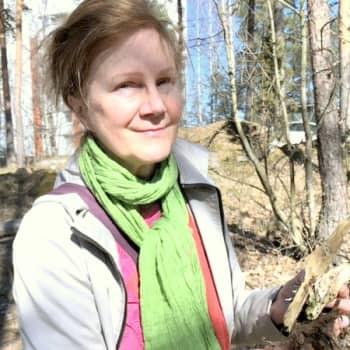 Heinäveistoksia luova Elina Strandberg hakee metsästä inspiraatiota ja materiaalia - luontoretkellä kuvanveistäjän kanssa
