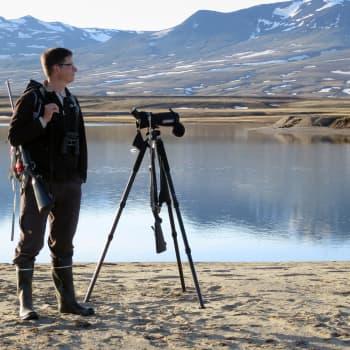 Grönlannin hiljaisuudessa niveljalkaisten jäljillä