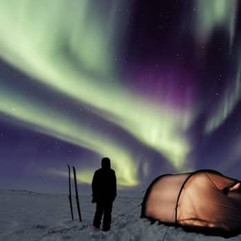 Luontokuvaaja Jorma Luhdan matka yöhön