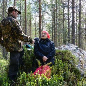 Ulla Savolainen