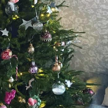 Ensimmäiset joulutortut paistettu ja glögikausi avattu - joulufanit ovat täydessä vauhdissa