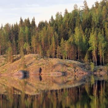 Suomalaisten hiljaisuus on luonnossa
