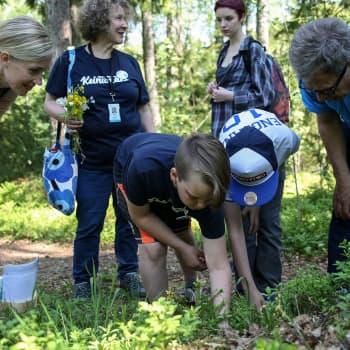 Metsä on tärkeä paikka Sauli Niinistölle