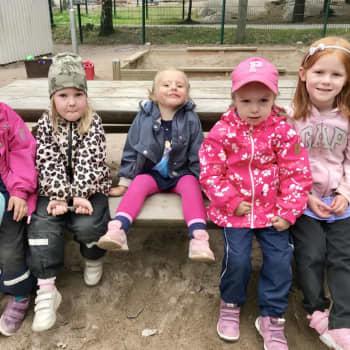 Barnpanelen löser HRT:s ekonomiska problem och letar fågelbajs