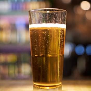 Roman Schatzin Maamme-kirja: Alkoholipolitiikan lonkerot