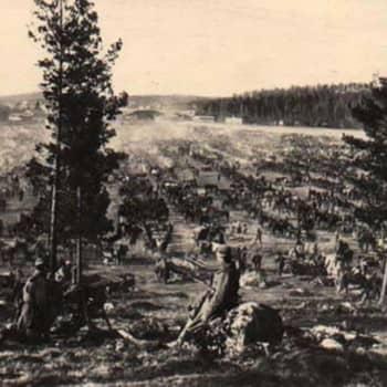 """Sisällissota 1918 - punaiset muistot: """"Marot kuorittiin keitosta pois ja syötiin"""" (Topias Teräskorpi, Pori)"""