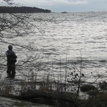 Minna Pyykön maailma: Kalakirjamies Ari Savikko