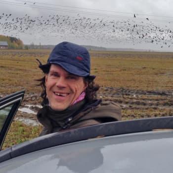 Luontoretki.: Tuhansia valkoposkia Lapinjärvellä