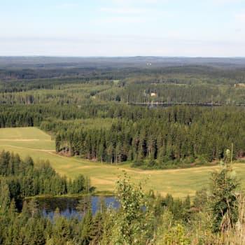 Radio Suomi Kuopio: Esittelyssä luontohelmi Kinahmi Nilsiä