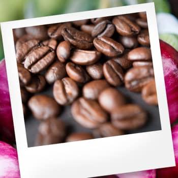 Makuasia: Kahvi ja ruoka-allergiat