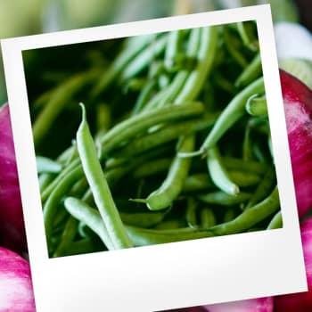 Makuasia: Härkäpapu ja kasvissyönti
