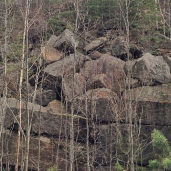 Metsäradio.: Louhikon luolat ja pesäonkalot