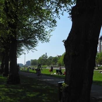 Metsäradio.: Sata puistoa