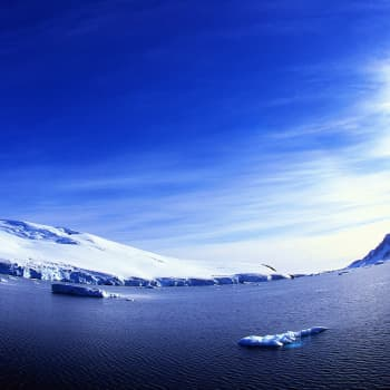 Petsamon menetyksestä Arktiseen neuvostoon