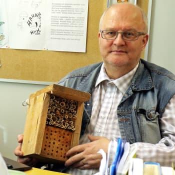 Metsäradio.: Hyönteishotellit odottavat asukkaita
