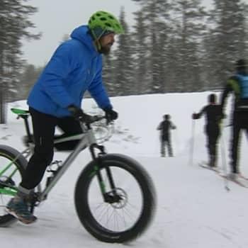 Metsäradio.: Läskipyöräily hurjassa suosiossa Lapissa
