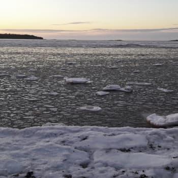 Minna Pyykön maailma: Itämeren vedenalaiset äänet