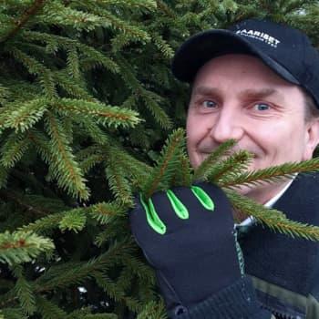 Metsäradio.: Joulukuusiviljelijän tiluksilla